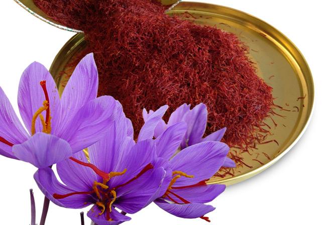زعفران گل پیچ